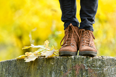 Brown female shoes on a stump, wanting foliage. Autumn concept