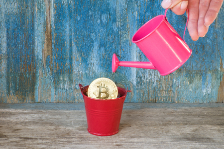 Little watering can in a female hand watering the bitcoin. Old wooden background. Business concept Stock Photo