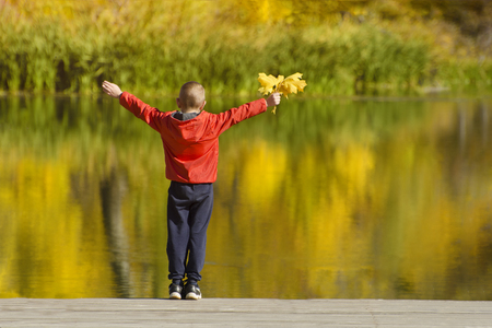 Boy in red jacket standing on the pier with leaves in his hand. Autumn sunny day. Back view Imagens