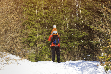 Man with backpack and son on shoulders stands against the background of snow and coniferous trees in the forest. Winter day. View from the back. Close-up