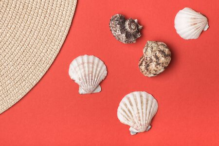Variety of seashells and part of straw hat. Living coral on the background. Flat lay. Marine concept