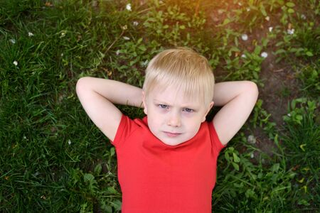Portrait of a blond boy lying on the grass. Hands behind head. Rest at nature Banco de Imagens