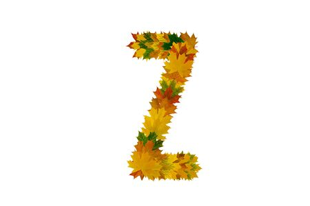 Letter Z from autumn maple leaves. Alphabet from green, yellow and orange leaves.