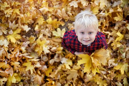 Blond boy with a bouquet of autumn leaves stands and looks up. Top view. Autumn concept