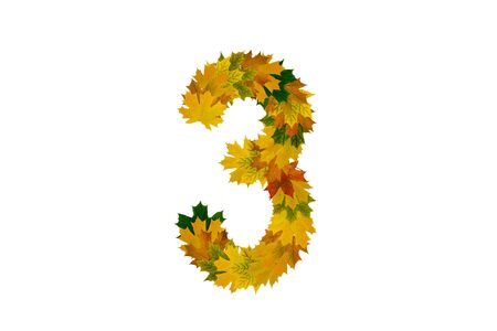 Digit 3 from autumn maple leaves isolated on white background. Alphabet from green, yellow and orange leaves.