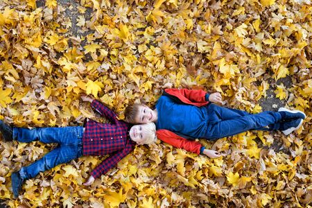 Two smiling boys lies in yellow autumn leaves. Top view. Autumn concept