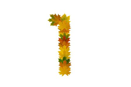 Digit 1 from autumn maple leaves isolated on white background. Alphabet from green, yellow and orange leaves.