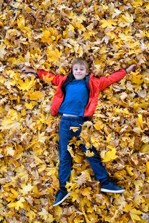 Smiling boy lies in yellow autumn leaves. Top view. Autumn concept Stock Photo