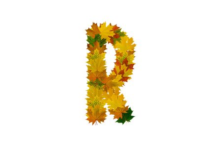 Letter R from autumn maple leaves. Alphabet from green, yellow and orange leaves. Stock Photo