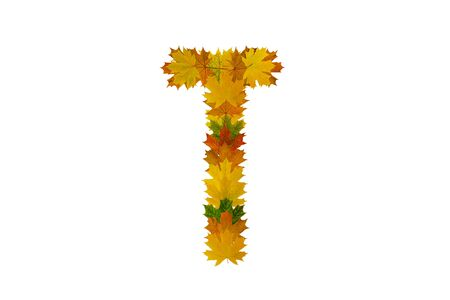 Letter T from autumn maple leaves. Alphabet from green, yellow and orange leaves.