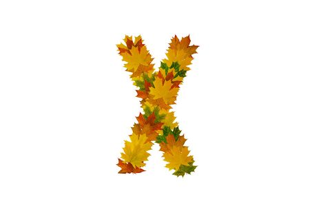 Letter X from autumn maple leaves. Alphabet from green, yellow and orange leaves. Stock Photo