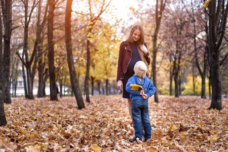 Little blond boy hid behind a yellow leaf. Wants to give mom. Autumn park on the background Stock Photo