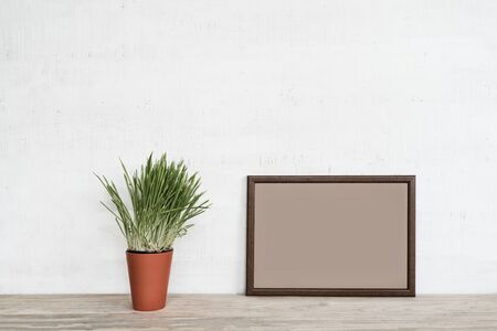 Empty frame on white wall. Place for text, green houseplant. 스톡 콘텐츠