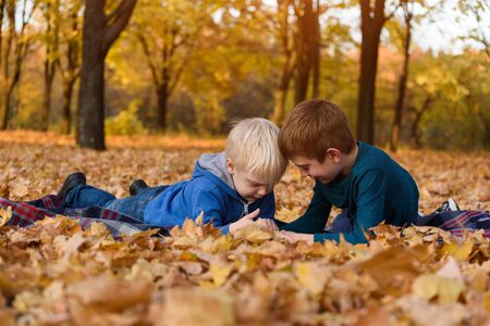 Two little brothers using smartphone, lying in yellow autumn leaves. Smiling and having fun. Fall day