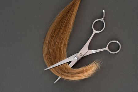 Cropped curl of blond and scissors. Black background. Close-up 版權商用圖片