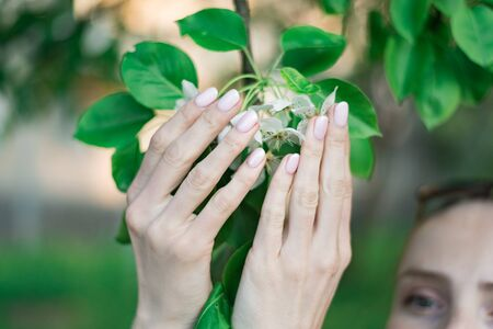 Neat spring manicure. Female hands holding a blossoming apple tree. Naturalness and ecological