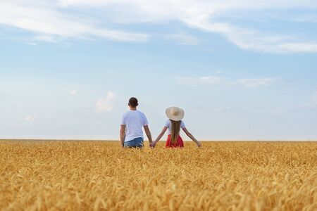 Young couple stands in wheat field and holding hands. Loving young couple outside.