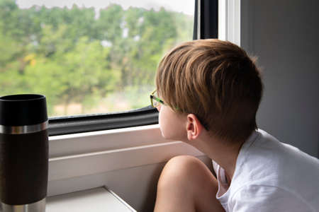 Boy thoughtfully looks out the train window. Traveling by train with children 免版税图像