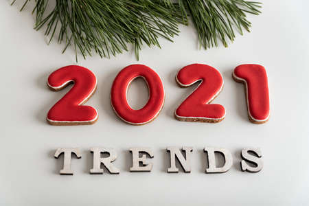 2021 Trends lettering on white background, top view. Fir tree, winter popular destinations in 2021.