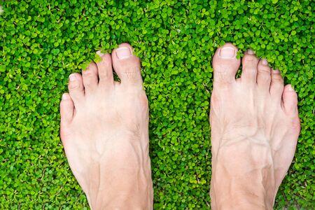 man's feet standing on grass (Desmodium triflorum)