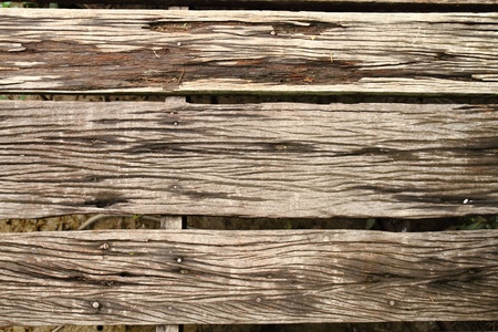 wood texture Stock Photo - 8746011