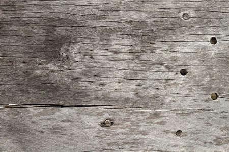 wood texture Stock Photo - 8746024