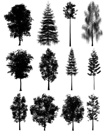 3d tree render on white background Stock fotó