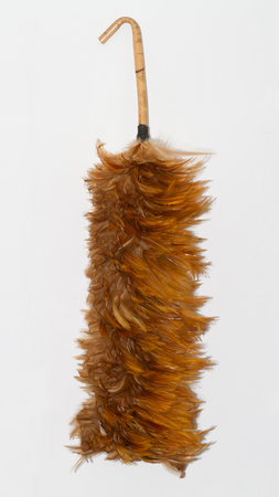 Feather duster photo