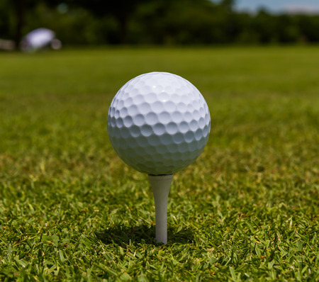 Golfball stand tee in the golf course. photo