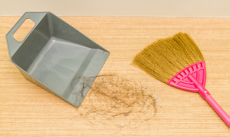 Close Up Dirty Alopecia Hair On Laminate Floor With Broom And