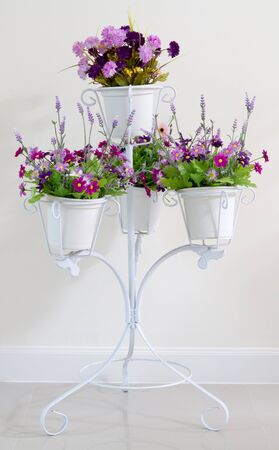 Violet flower in white four flower pots at stand for decoration on white wall background. Standard-Bild