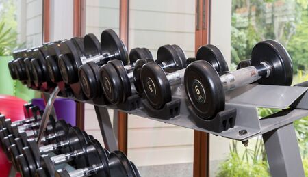 Dumbbells on stand in fitness.