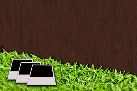 fresh spring green grass and photo paper Stock Photo - 14190943
