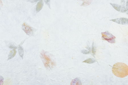mulberry paper: Mulberry paper background