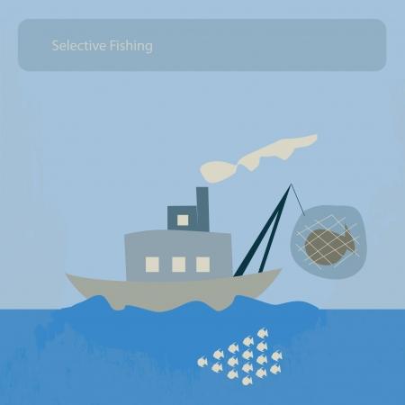 fishery: selective fishing