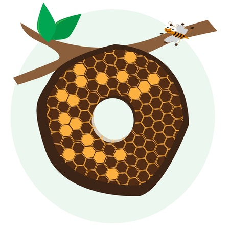 alphabetical of honeycomb Stock Vector - 17720973