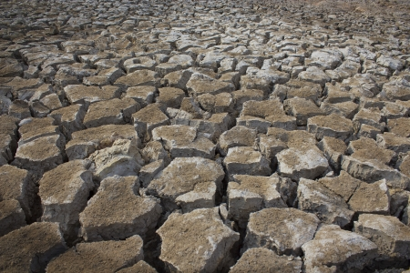 Dried earth because of rain dose not fall and the land lacked of water for agriculture