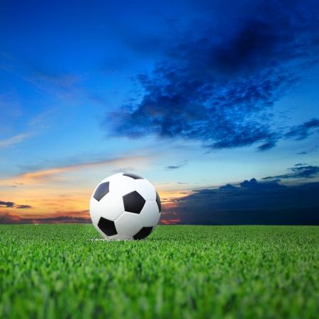 サッカー 写真素材 - 22720774