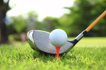 up country: Golf club and ball in grass