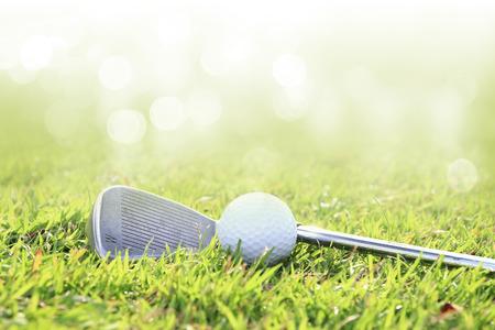 녹색 잔디와 골프