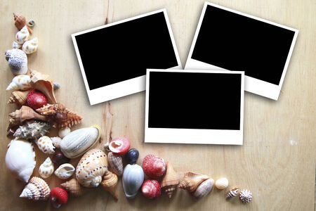 photo frames on the wooden background with seashells around photo