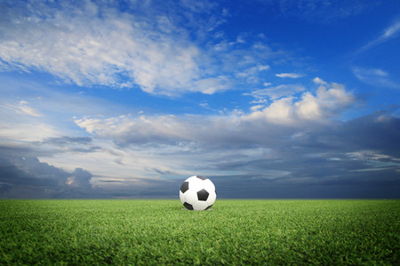 ballsport: soccer field with blue sky Stock Photo
