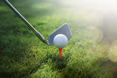 playing golf: Golf club and ball in grass