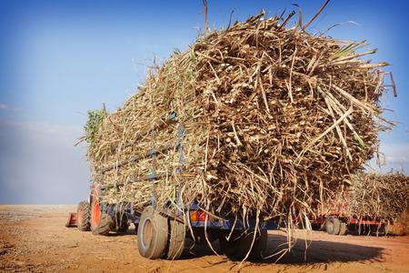 完全な貨物が付いているサトウキビ トラック 写真素材 - 71044405