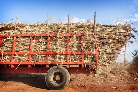 完全な貨物が付いているサトウキビ トラック 写真素材 - 70944602