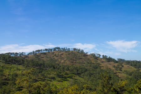 sparse: Vietnamese Landscape : hills covered with sparse forest