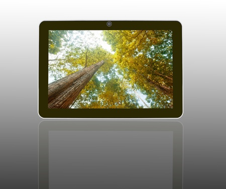 Tablet Computer  Stock Photo - 11721110