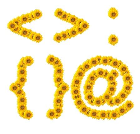 xyz: Symbol of sunflower on white background
