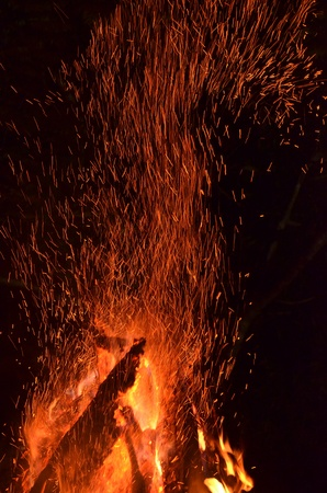 Flames of a campfire in the night  photo