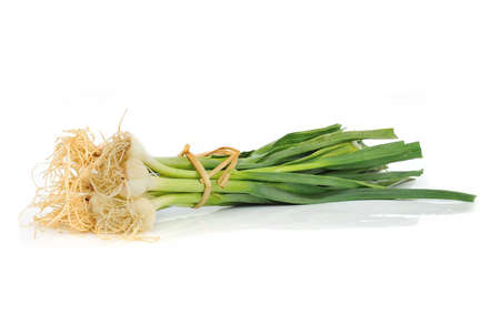 young green garlic leaves isolated  Stock Photo - 12567042
